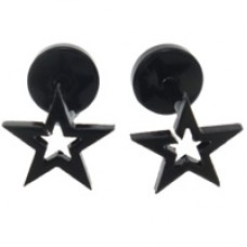 Stainless Steel Earrings with Star Detail