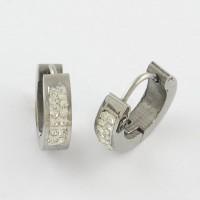 Clay Pave Rinestone Stainless Steel Huggie Earrings