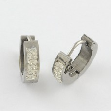 Clay Pave Rinestone Stainless Steel Huggie Earrings