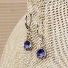 Stainless Steel Round Dangle Earrings - Light Purple