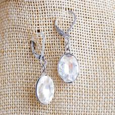 Stainless Steel Oval Dangle Earrings