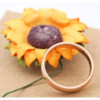 Stainless Steel RoseGold Classic 3mm Ring #9